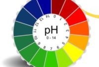 pengertian pH